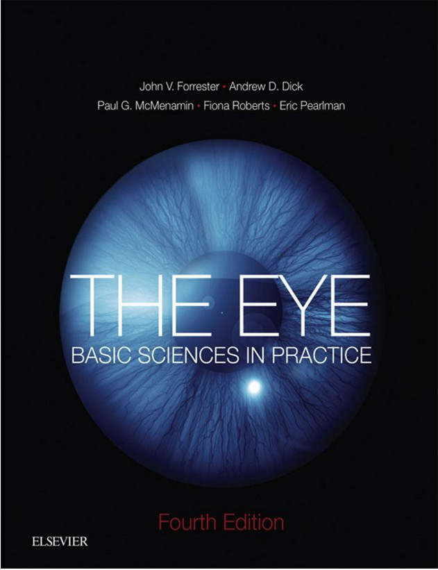 The Little Eye Book: A Pupil's Guide to Understanding